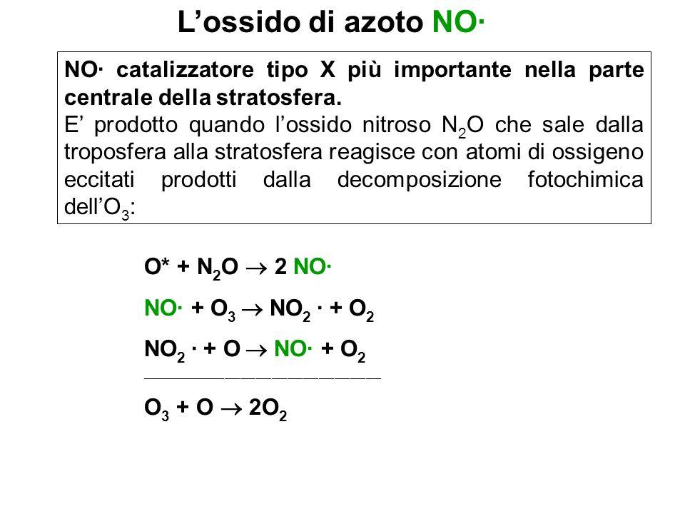 L'ossido di azoto NO· NO· catalizzatore tipo X più importante nella parte centrale della stratosfera.
