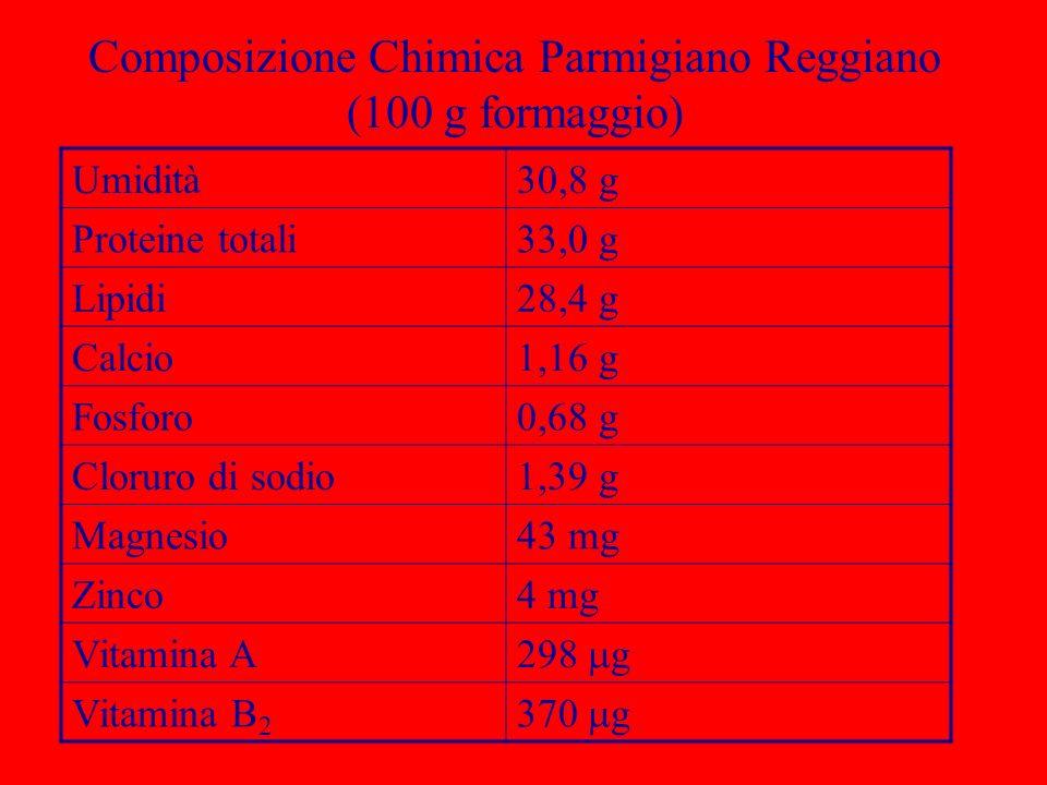 Composizione Chimica Parmigiano Reggiano (100 g formaggio)
