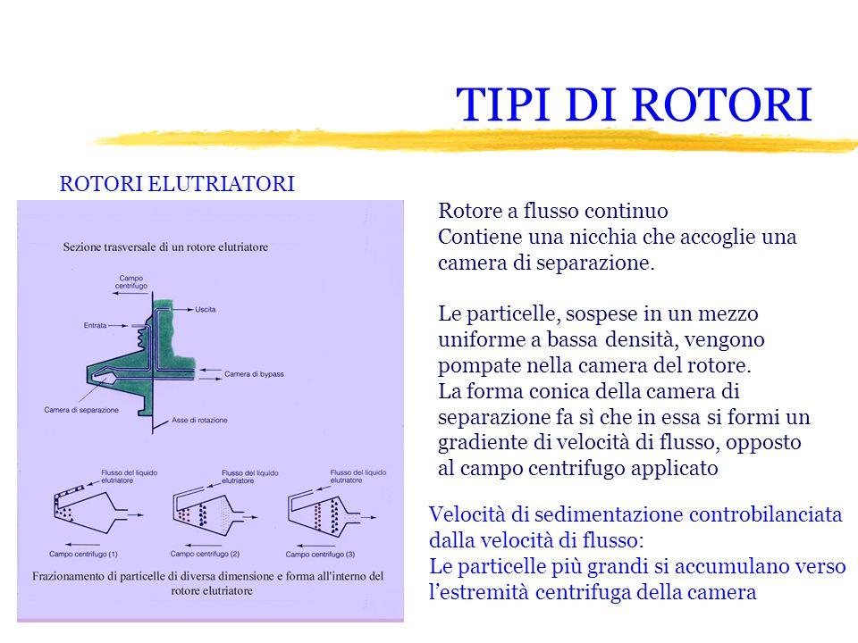 TIPI DI ROTORI ROTORI ELUTRIATORI Rotore a flusso continuo