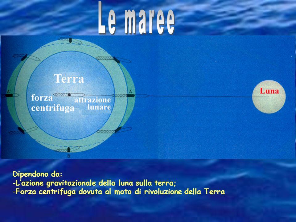Le maree Dipendono da: L'azione gravitazionale della luna sulla terra;