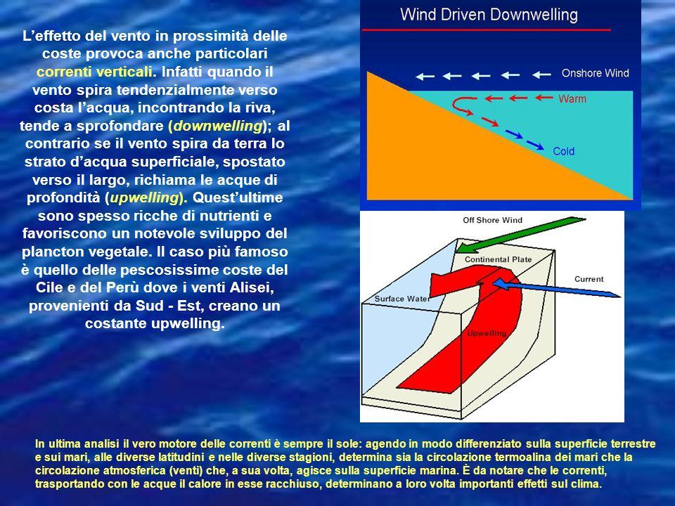 L'effetto del vento in prossimità delle coste provoca anche particolari correnti verticali. Infatti quando il vento spira tendenzialmente verso costa l'acqua, incontrando la riva, tende a sprofondare (downwelling); al contrario se il vento spira da terra lo strato d'acqua superficiale, spostato verso il largo, richiama le acque di profondità (upwelling). Quest'ultime sono spesso ricche di nutrienti e favoriscono un notevole sviluppo del plancton vegetale. Il caso più famoso è quello delle pescosissime coste del Cile e del Perù dove i venti Alisei, provenienti da Sud - Est, creano un costante upwelling.