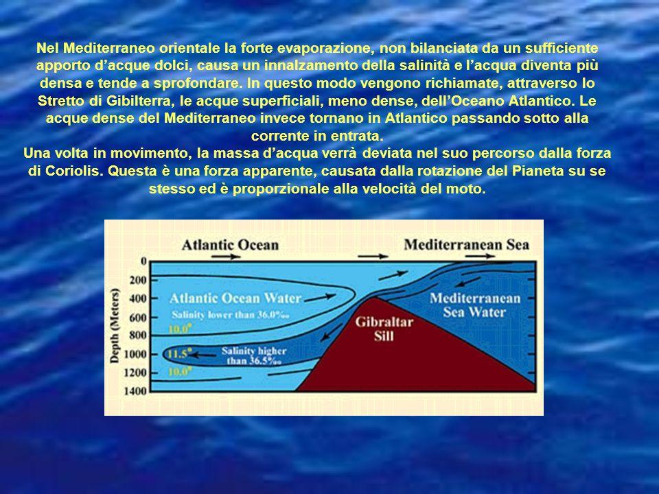 Nel Mediterraneo orientale la forte evaporazione, non bilanciata da un sufficiente apporto d'acque dolci, causa un innalzamento della salinità e l'acqua diventa più densa e tende a sprofondare. In questo modo vengono richiamate, attraverso lo Stretto di Gibilterra, le acque superficiali, meno dense, dell'Oceano Atlantico. Le acque dense del Mediterraneo invece tornano in Atlantico passando sotto alla corrente in entrata.
