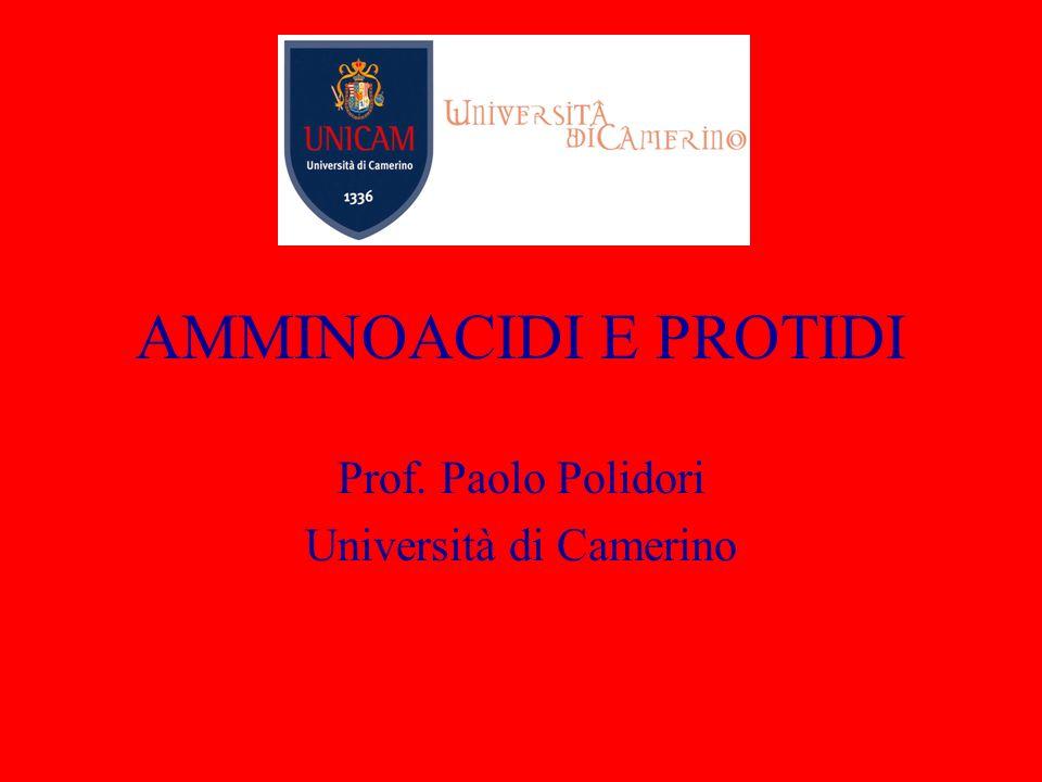 Prof. Paolo Polidori Università di Camerino