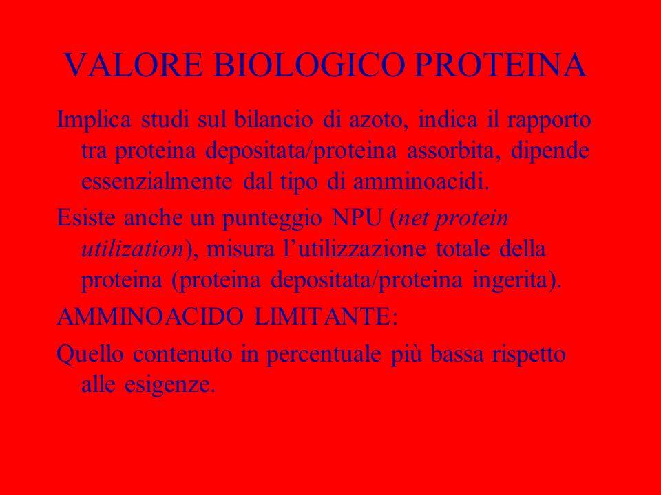 VALORE BIOLOGICO PROTEINA