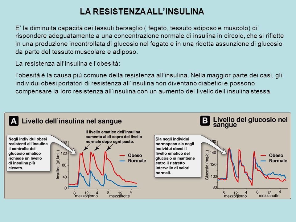 LA RESISTENZA ALL'INSULINA