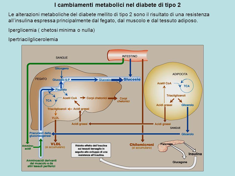 I cambiamenti metabolici nel diabete di tipo 2