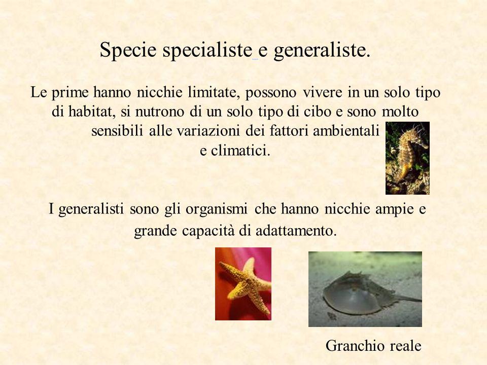 Specie specialiste e generaliste