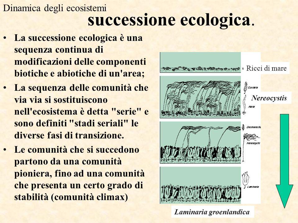 successione ecologica.