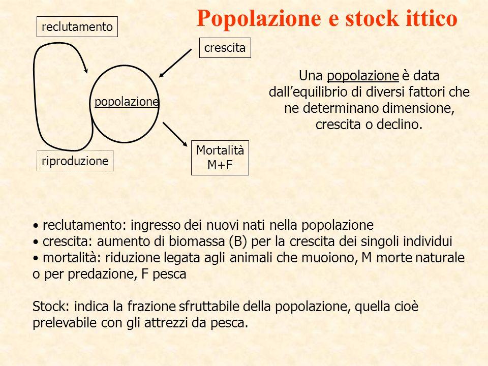 Popolazione e stock ittico