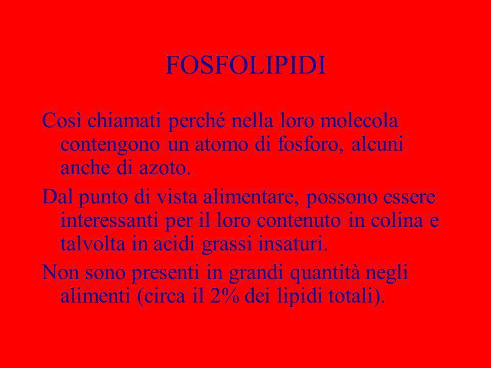 FOSFOLIPIDI Così chiamati perché nella loro molecola contengono un atomo di fosforo, alcuni anche di azoto.