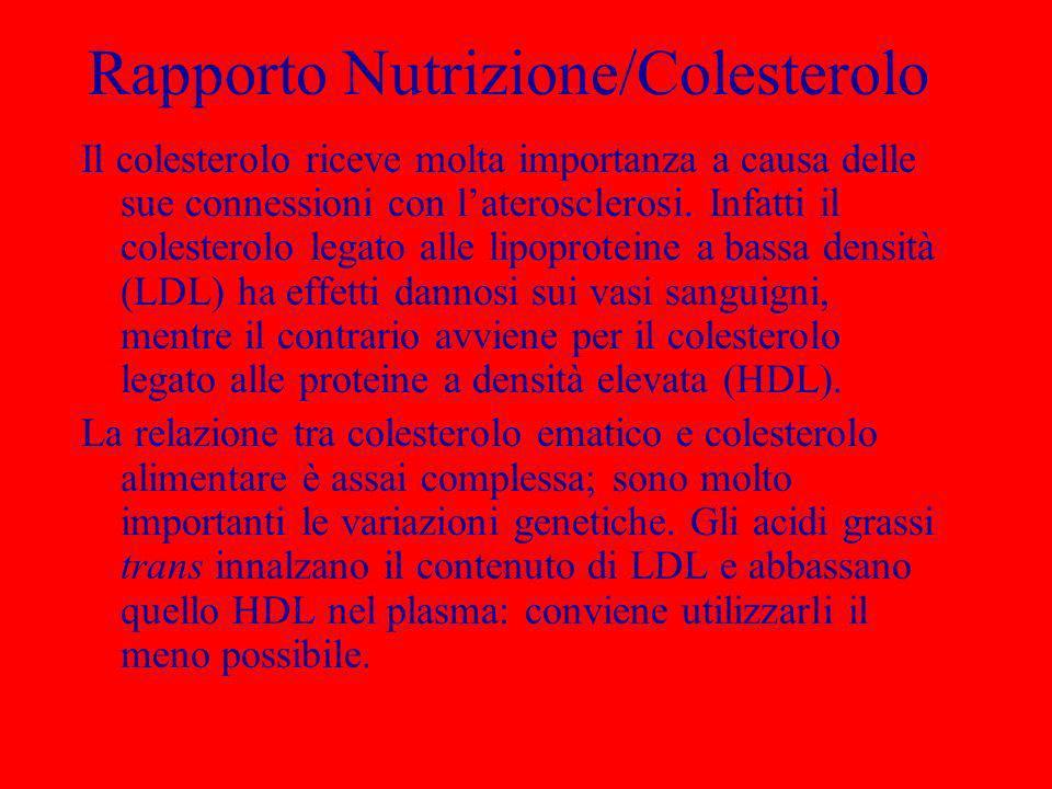 Rapporto Nutrizione/Colesterolo