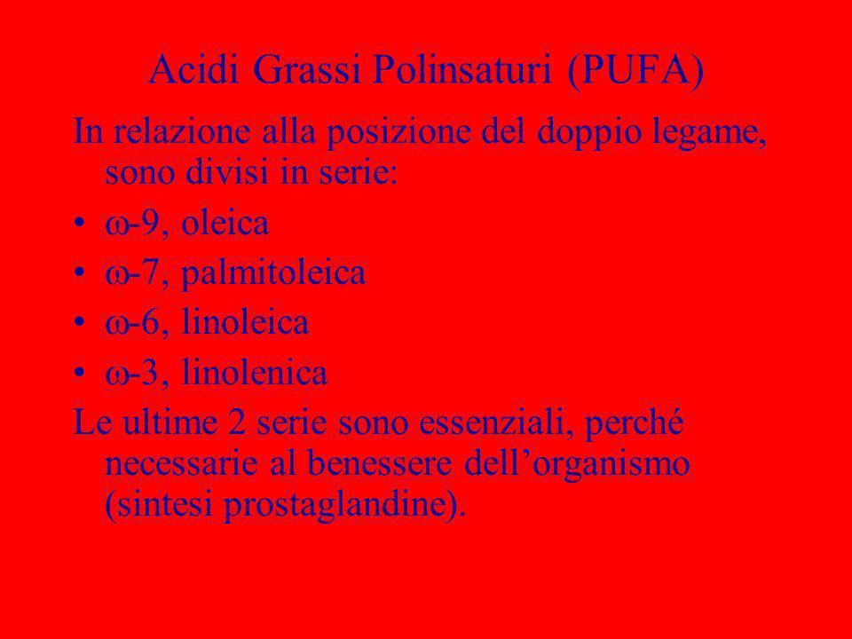 Acidi Grassi Polinsaturi (PUFA)