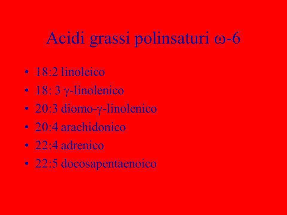 Acidi grassi polinsaturi -6