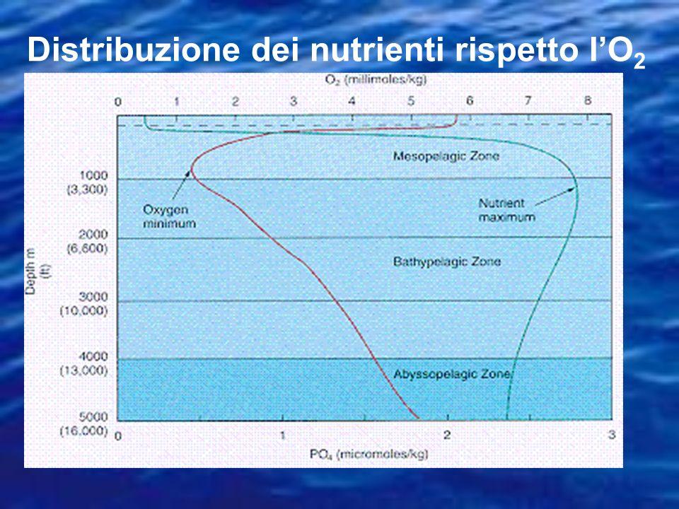 Distribuzione dei nutrienti rispetto l'O2