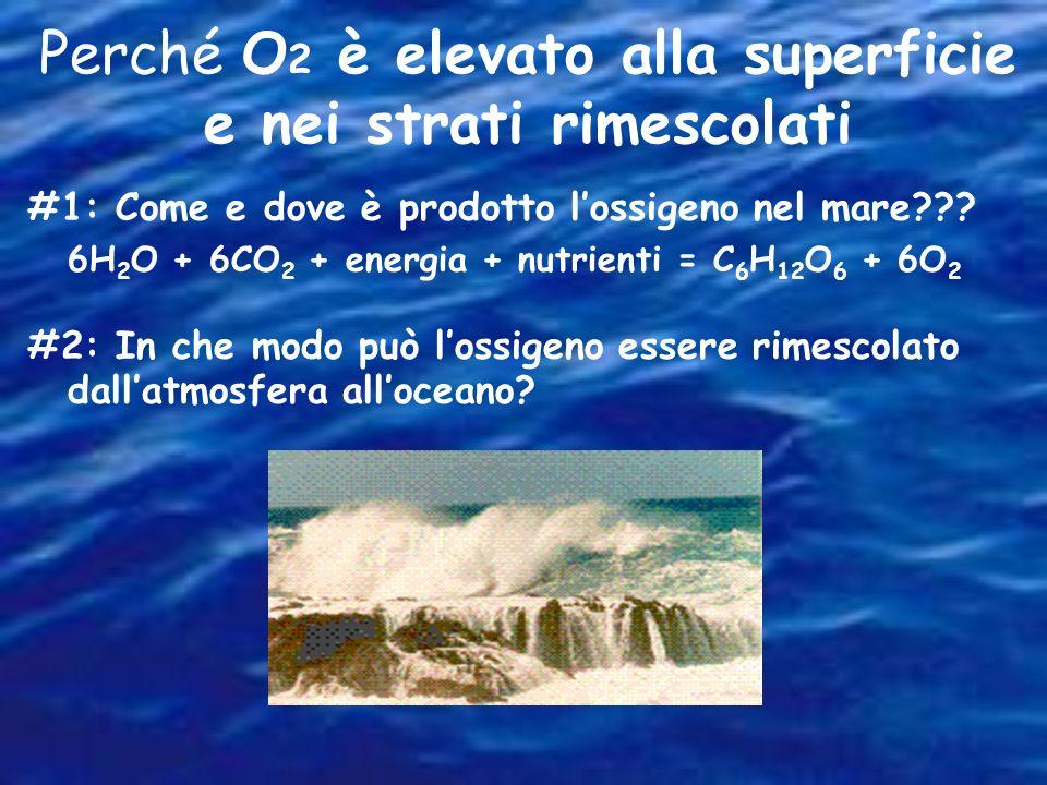 Perché O2 è elevato alla superficie e nei strati rimescolati