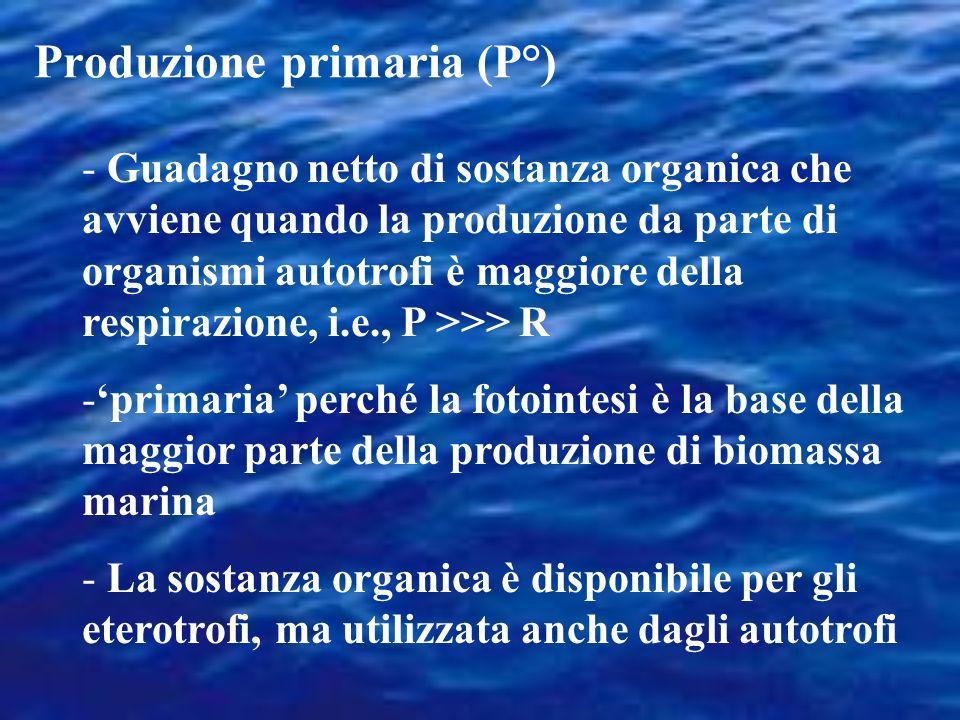 Produzione primaria (P°)