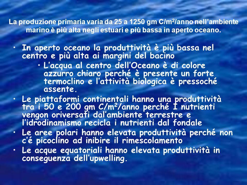 La produzione primaria varia da 25 a 1250 gm C/m2/anno nell'ambiente marino è più alta negli estuari e più bassa in aperto oceano.