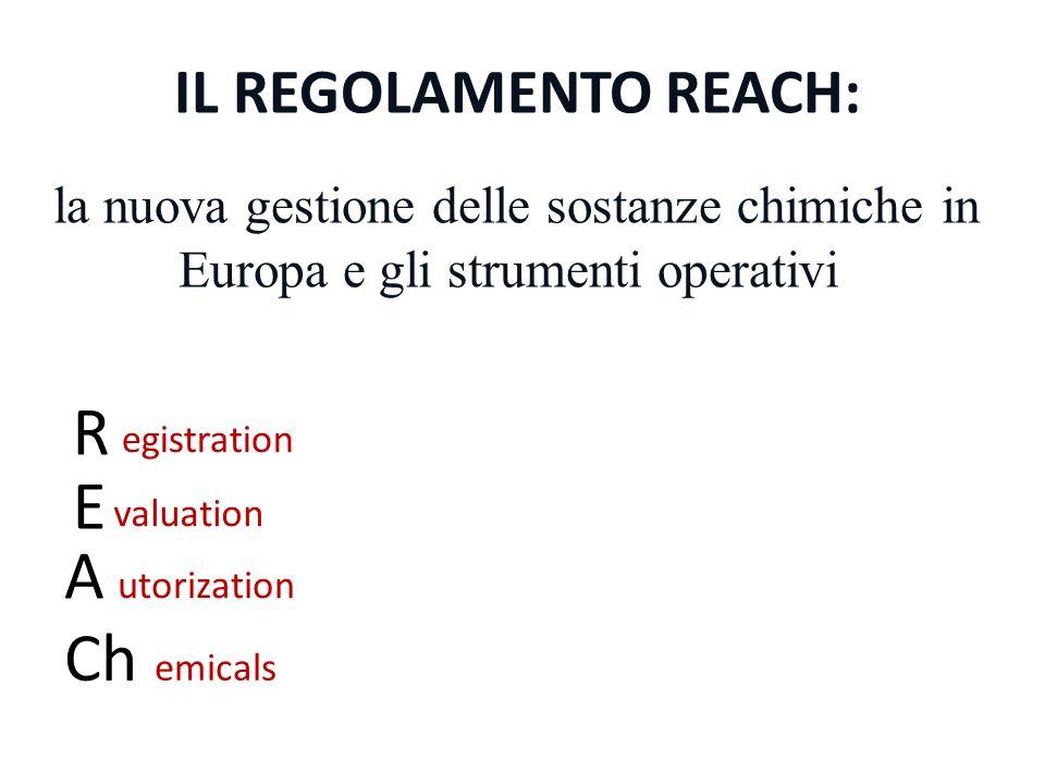 IL REGOLAMENTO REACH: R E A Ch