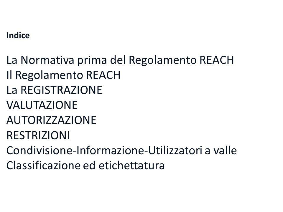 La Normativa prima del Regolamento REACH Il Regolamento REACH
