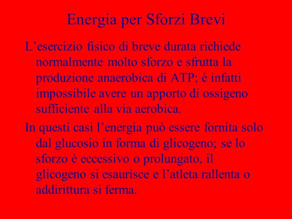 Energia per Sforzi Brevi