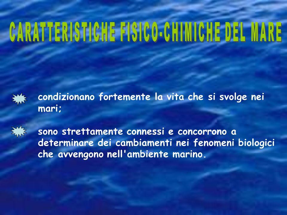CARATTERISTICHE FISICO-CHIMICHE DEL MARE