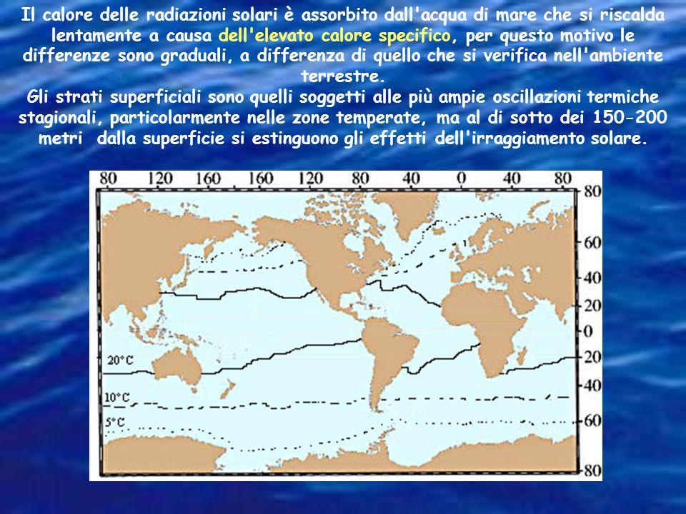 Il calore delle radiazioni solari è assorbito dall acqua di mare che si riscalda lentamente a causa dell elevato calore specifico, per questo motivo le differenze sono graduali, a differenza di quello che si verifica nell ambiente terrestre.