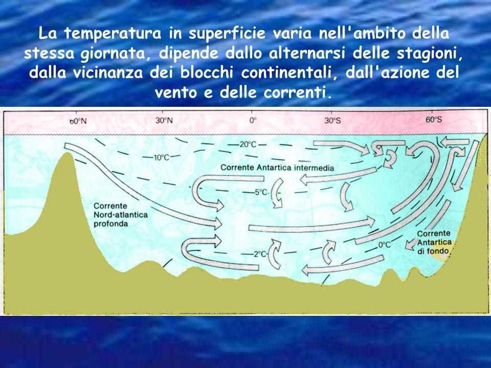 La temperatura in superficie varia nell ambito della stessa giornata, dipende dallo alternarsi delle stagioni, dalla vicinanza dei blocchi continentali, dall azione del vento e delle correnti.