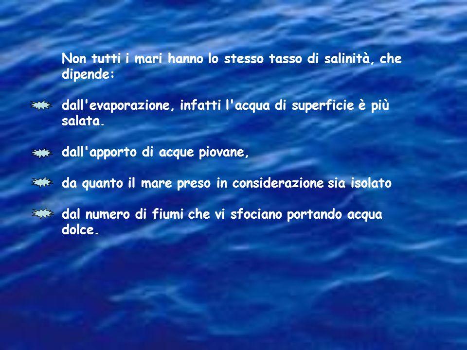 Non tutti i mari hanno lo stesso tasso di salinità, che dipende: