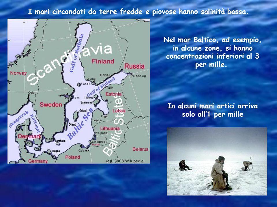 I mari circondati da terre fredde e piovose hanno salinità bassa.