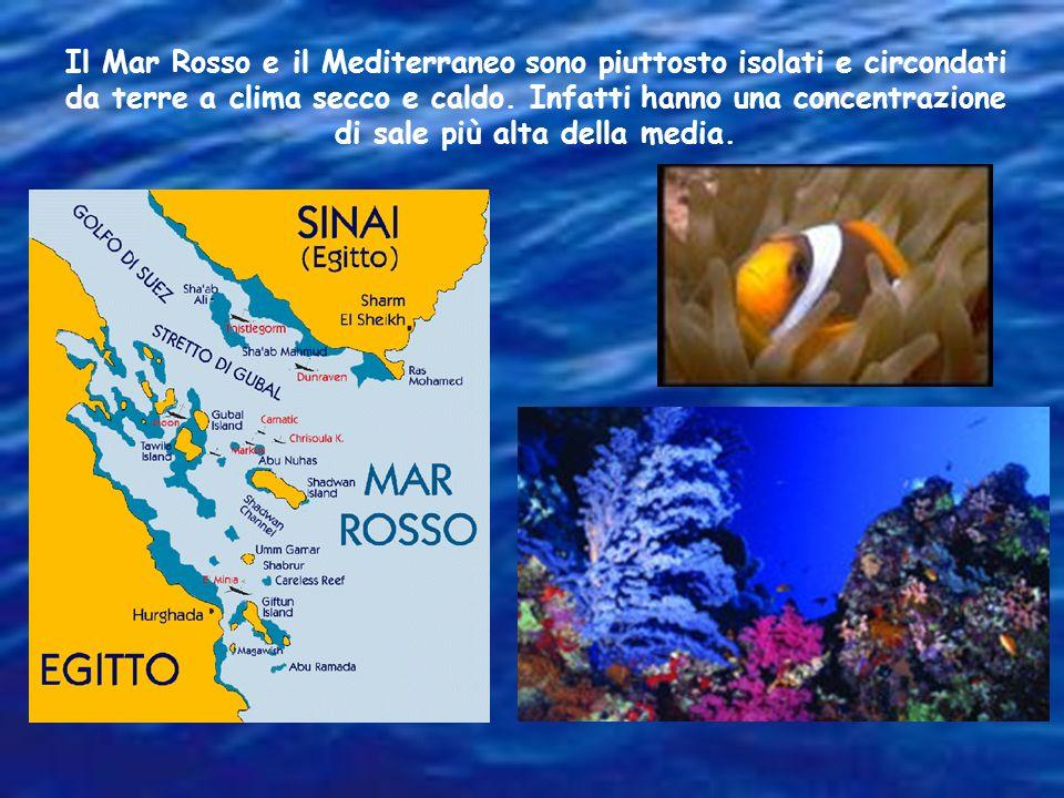 Il Mar Rosso e il Mediterraneo sono piuttosto isolati e circondati da terre a clima secco e caldo.