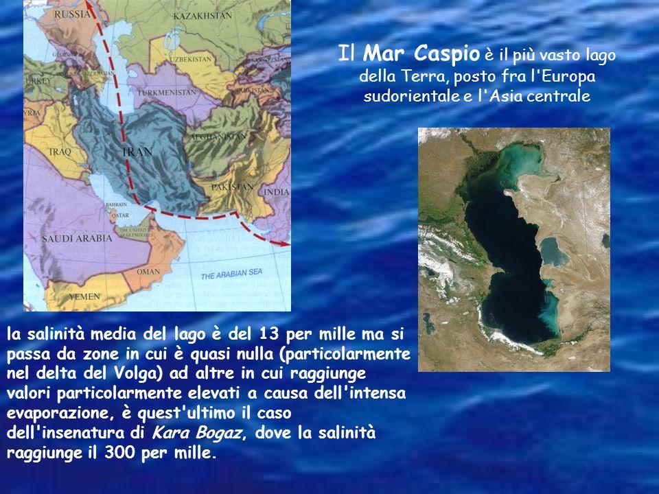 Il Mar Caspio è il più vasto lago della Terra, posto fra l Europa sudorientale e l Asia centrale