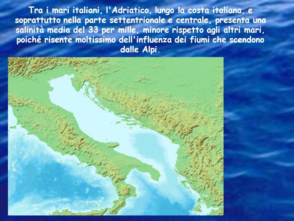 Tra i mari italiani, l Adriatico, lungo la costa italiana, e soprattutto nella parte settentrionale e centrale, presenta una salinità media del 33 per mille, minore rispetto agli altri mari, poiché risente moltissimo dell influenza dei fiumi che scendono dalle Alpi.
