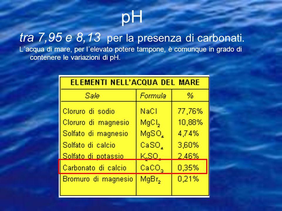 pH tra 7,95 e 8,13 per la presenza di carbonati.