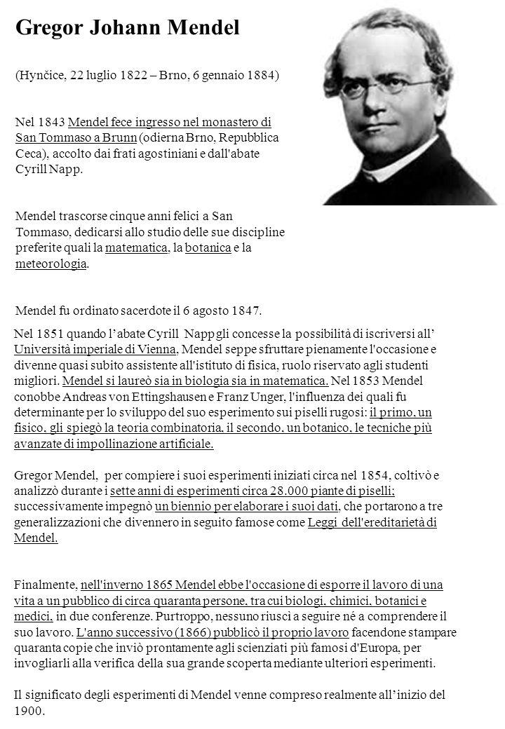 Gregor Johann Mendel (Hynčice, 22 luglio 1822 – Brno, 6 gennaio 1884)