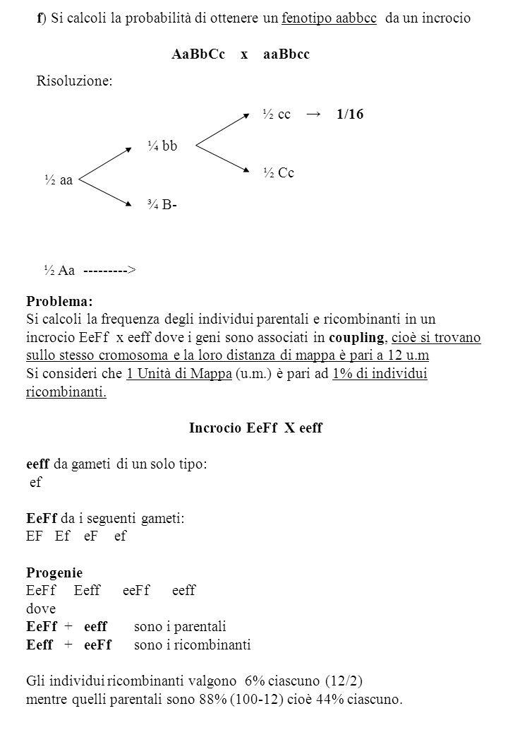 f) Si calcoli la probabilità di ottenere un fenotipo aabbcc da un incrocio