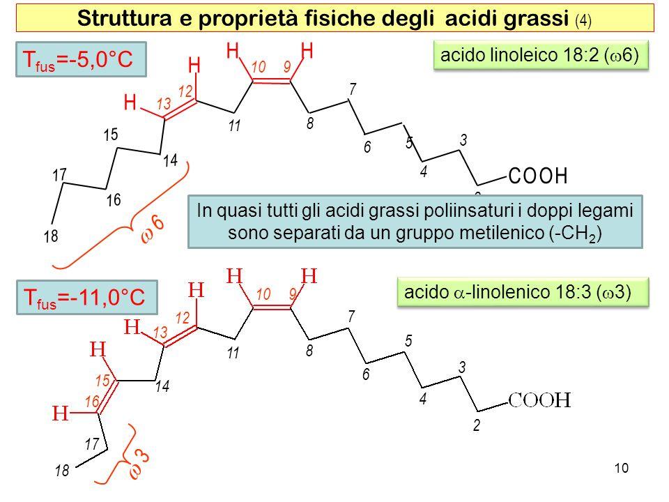 Struttura e proprietà fisiche degli acidi grassi (4) H