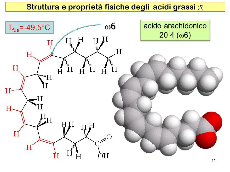 Struttura e proprietà fisiche degli acidi grassi (5)