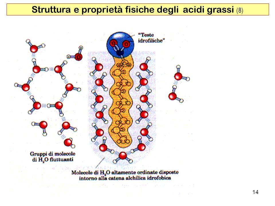 Struttura e proprietà fisiche degli acidi grassi (8)