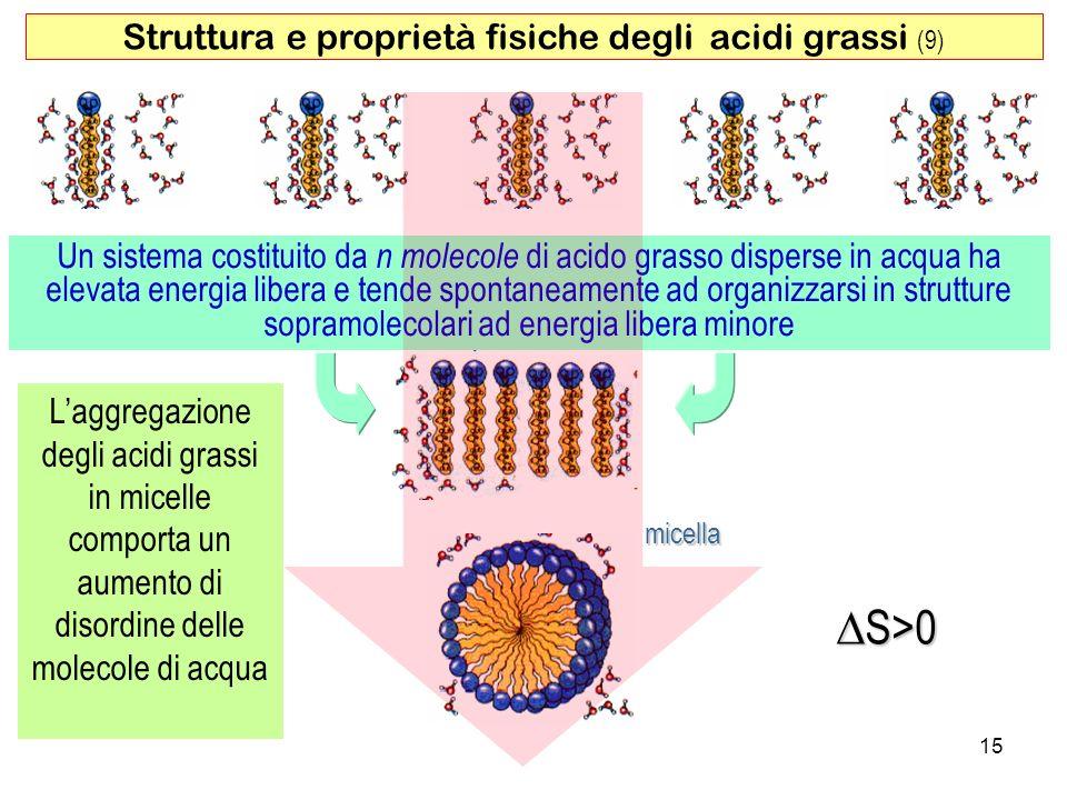 Struttura e proprietà fisiche degli acidi grassi (9)