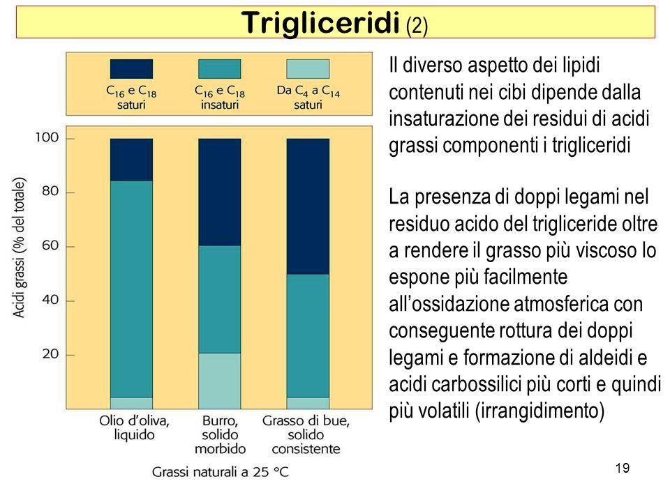 Trigliceridi (2) Il diverso aspetto dei lipidi contenuti nei cibi dipende dalla insaturazione dei residui di acidi grassi componenti i trigliceridi.