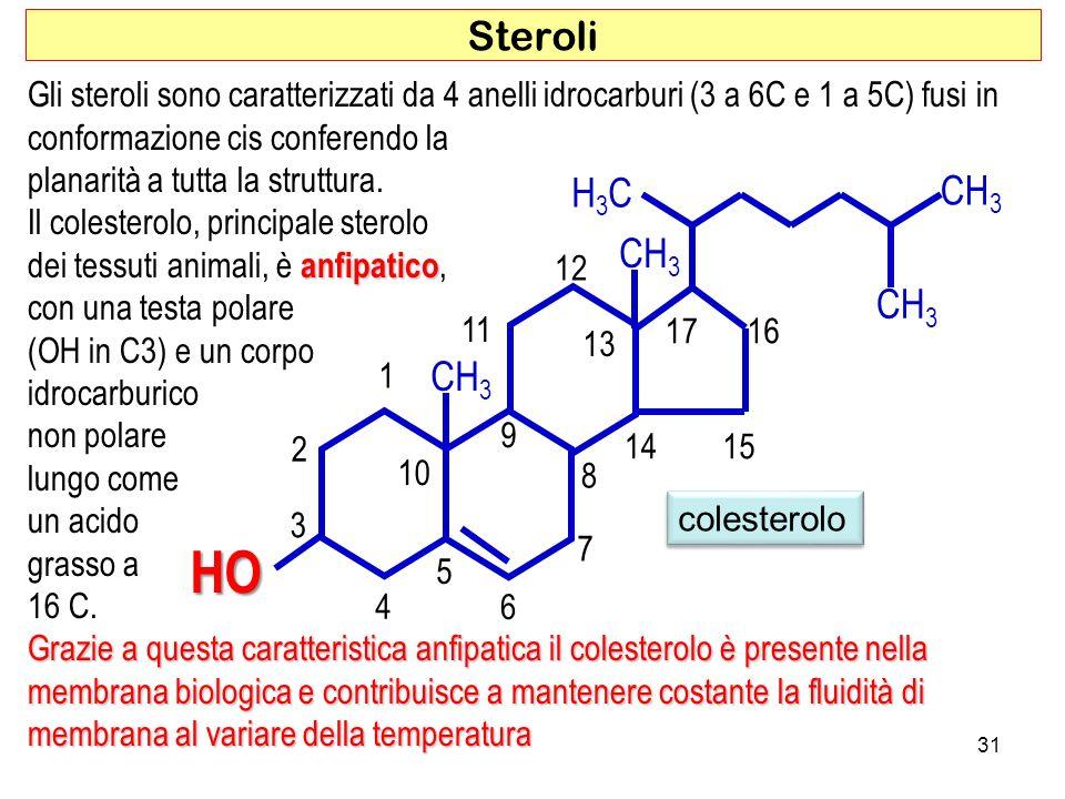 Steroli Gli steroli sono caratterizzati da 4 anelli idrocarburi (3 a 6C e 1 a 5C) fusi in. conformazione cis conferendo la.