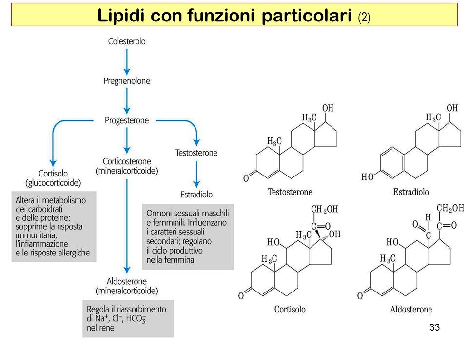 Lipidi con funzioni particolari (2)