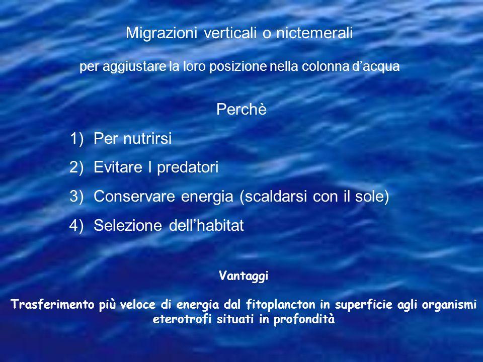 Migrazioni verticali o nictemerali