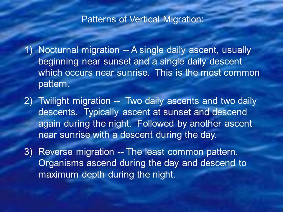 Patterns of Vertical Migration: