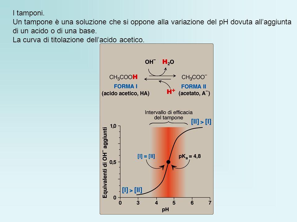 I tamponi. Un tampone è una soluzione che si oppone alla variazione del pH dovuta all'aggiunta. di un acido o di una base.