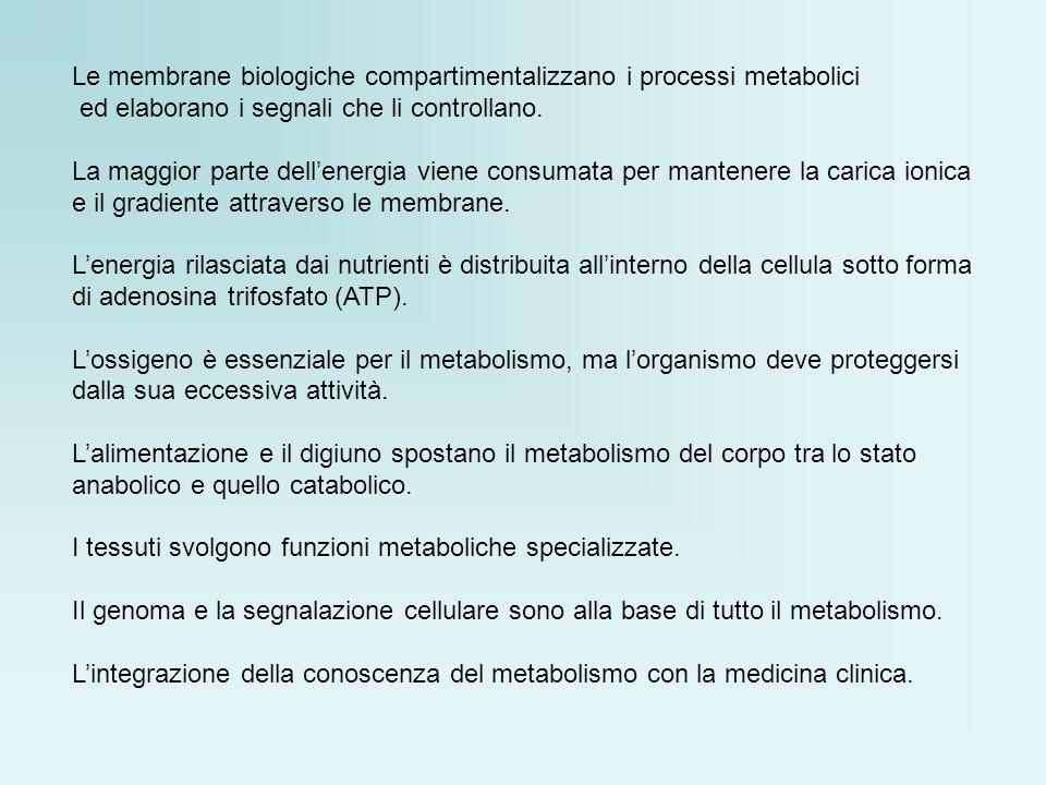 Le membrane biologiche compartimentalizzano i processi metabolici