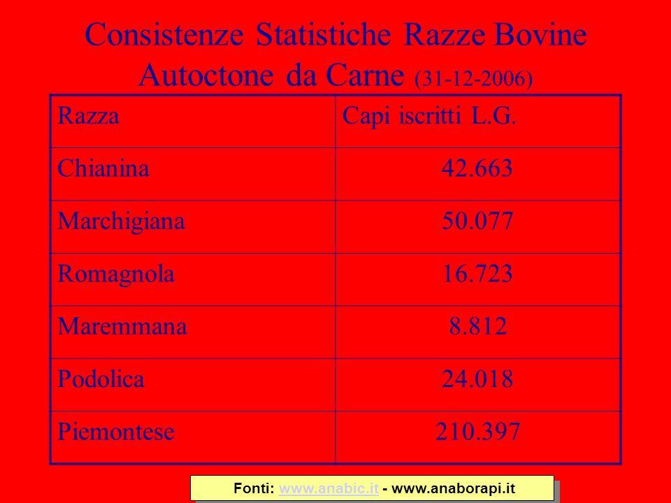 Consistenze Statistiche Razze Bovine Autoctone da Carne (31-12-2006)