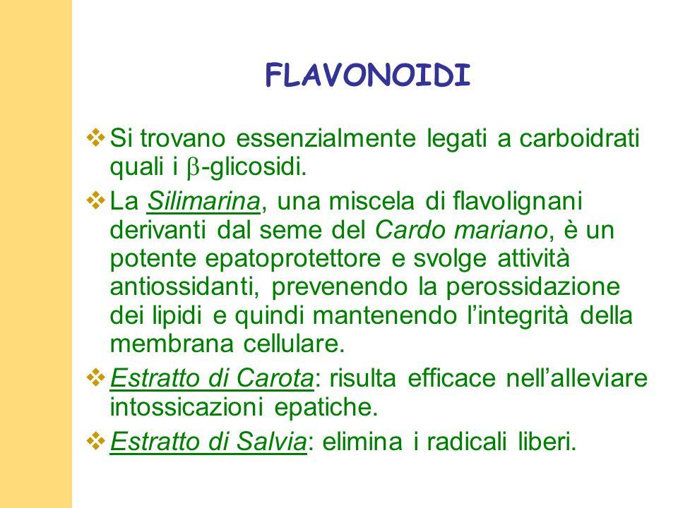 FLAVONOIDI Si trovano essenzialmente legati a carboidrati quali i -glicosidi.