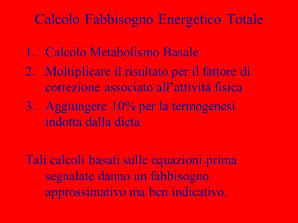 Calcolo Fabbisogno Energetico Totale
