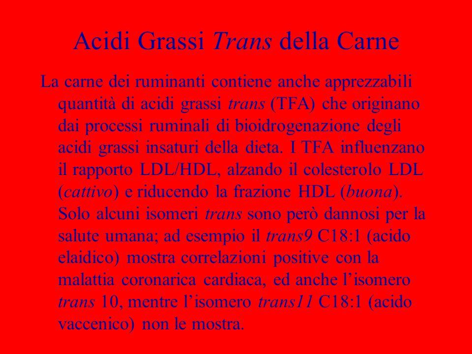 Acidi Grassi Trans della Carne